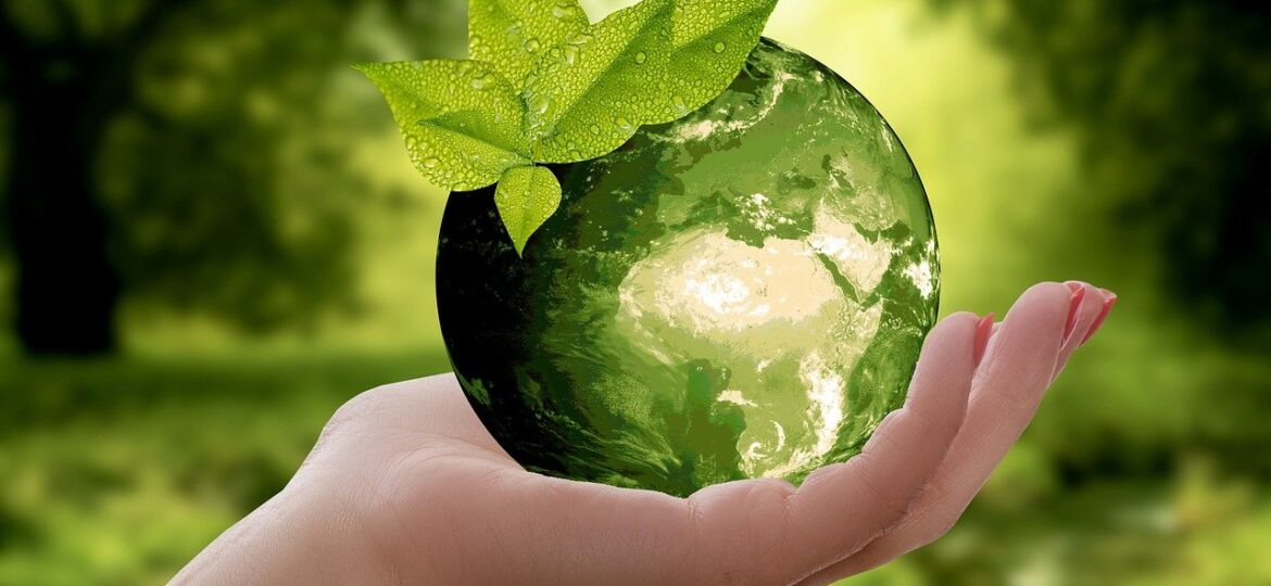 sustainable consumption choice